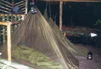 Mossie nets - essential in the jungle!